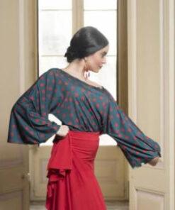 Top Flamenco Davedans Sils